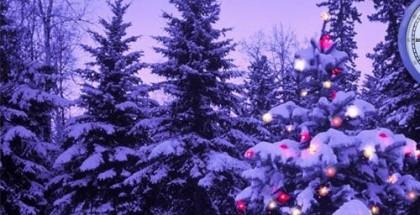 Paesaggio-Auguri-di-Buon-Natale