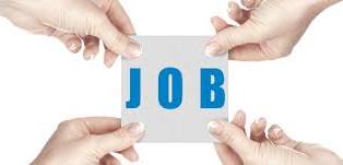 Job immagine